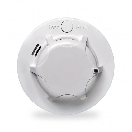 ERAY Smoke Alarm Battery Operated Smoke Detector Work with WM2FX, WM3FX Home Alarm System